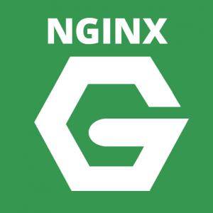 hosting nginx